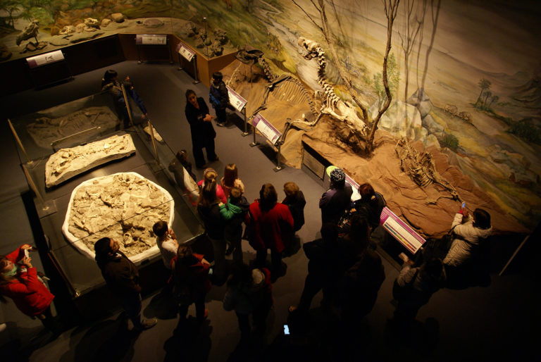 IMD - International Museum Day - IMD